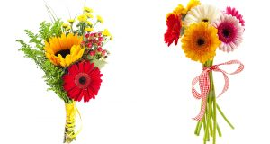 Выбор цветов на подарок