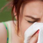 Что делать, когда аллергия на собак