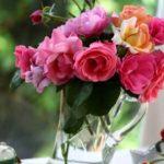 Как продлить жизнь букету из живых цветов?
